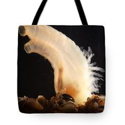 Sea Vase Tote Bag
