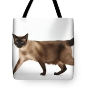 Seal Point Siamese Cat Tote Bag