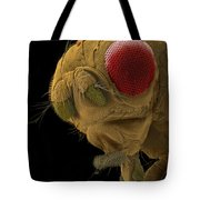 Sem Of A Mutant Fruit Fly Tote Bag