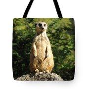 Sentinel Meerkat Tote Bag