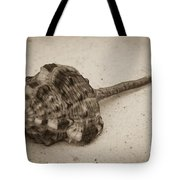 Sepia Shell Tote Bag