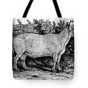 Sheep, C1800 Tote Bag