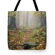 Shenandoah National Park In Virginia Tote Bag