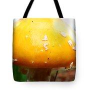 Shiny Top Tote Bag