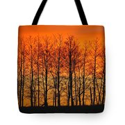 Silhouette Of Trees Against Sunset Tote Bag