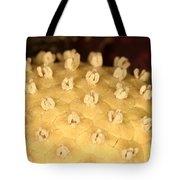 Skunk Cabbage Flower Tote Bag