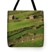 Slea Head, Dingle Peninsula, County Tote Bag