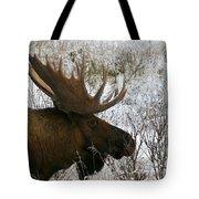 Snow Moose Tote Bag