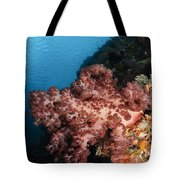 Soft Coral Seascape,  Indonesia Tote Bag