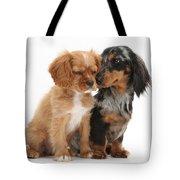 Spaniel & Dachshund Puppies Tote Bag