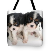 Spaniel Puppies Tote Bag