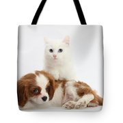 Spaniel Puppy And Kitten Tote Bag