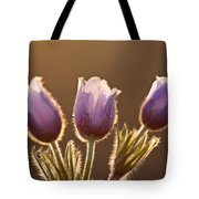 Spring Time Crocus Flower Tote Bag