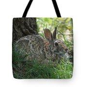 Spring Time Rabbit Tote Bag