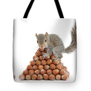 Squirrel And Nut Pyramid Tote Bag