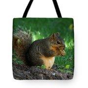 Squirrel Eating Tote Bag