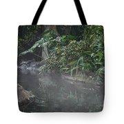 Steamy Tote Bag