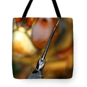 Stinger Of The Cicada Killer Wasp Tote Bag