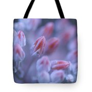 Stonecrop Flowers Emerge On An Early Tote Bag