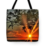 Summers Breeze Sunsets Through Tress Tote Bag