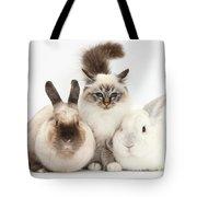 Tabby-point Birman Cat And Rabbits Tote Bag