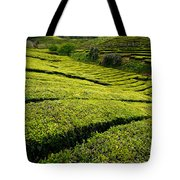 Tea Gardens Tote Bag