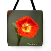 Thank You - Card Tote Bag