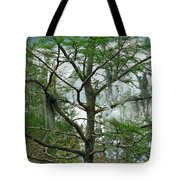 The Mating Dance II Tote Bag