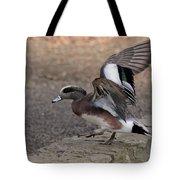American Wigeon Waterfowl Tote Bag