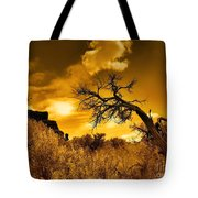 The Weight Of The Clouds In Sepia Tote Bag