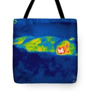 Thermogram Of A Tiger Tote Bag