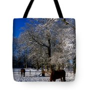 Thoroughbred Horses, Mares In Snow Tote Bag by The Irish Image Collection