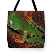 Tiger-striped Monkey Frog Tote Bag