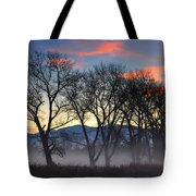 Trees With Fog Tote Bag