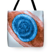 Trichinella In Muscle Lm Tote Bag