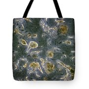 Trichonympha Tote Bag
