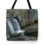 Turtle In The Rocks Tote Bag