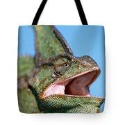 Veiled Chameleon Chamaeleo Calyptratus Tote Bag