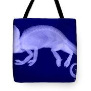Veiled Chameleon X-ray Tote Bag