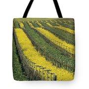 Vineyards In Californias Edna Valley Tote Bag