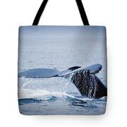 Whales Fluke Tote Bag