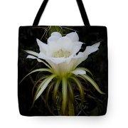 White Echinopsis Flower  Tote Bag