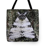 White Underwing Moth Tote Bag