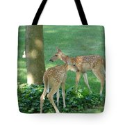 Whitetail Fawns Tote Bag