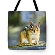 Wild Chipmunk Tote Bag