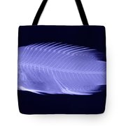 X-ray Of A Wrasse Fish Tote Bag