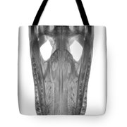 X-ray Of American Alligator Tote Bag