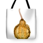 X-ray Of Fall Decorative Gourd Tote Bag