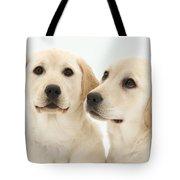 Yellow Labrador Retriever Pups Tote Bag