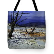 Yellowstone National Park 6 Tote Bag